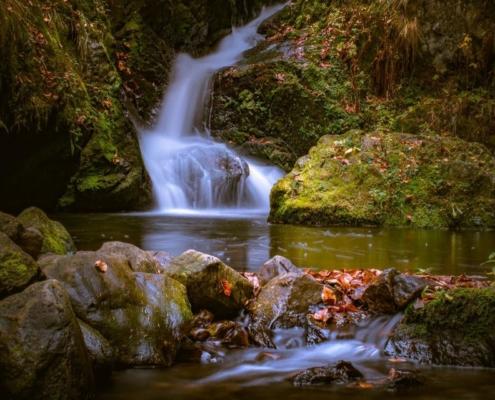 Viel kleine Wasserfälle gibt es im Schwarzwälder Hochwald