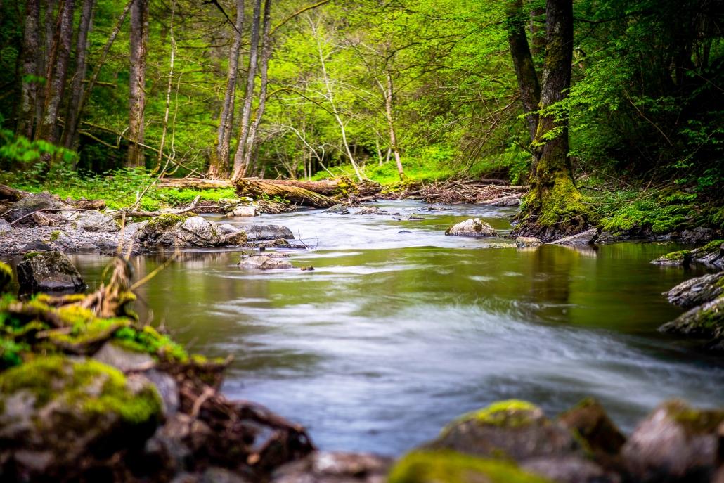 Der Hunsrück ist durchzogen von romantischen Bächen. Viele der Wanderwege verlaufen direkt an diesen vorbei und laden zu einer Pause am/im kühlen, klaren Wasser ein.