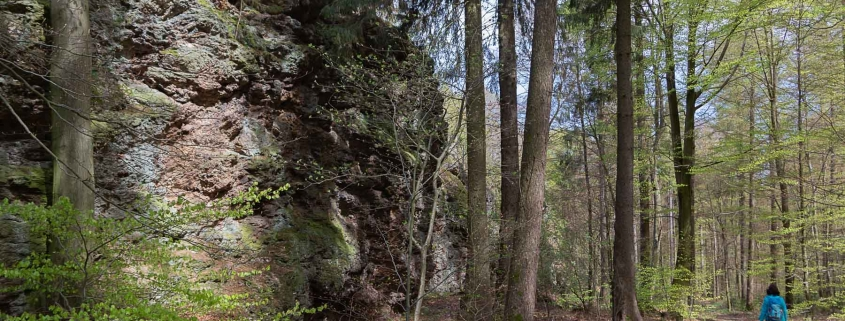 """Der """"Herler Wacken"""" - 500 Meter lang erstreckt sich dieses Naturdenkmal in den Herler Wald auf der Traumschleife """"Schiefer-Wackenweg"""""""
