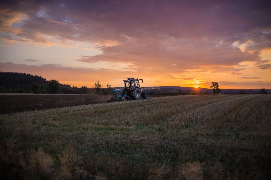 Landwirtschaft direkt vor dem Dorf Geisfeld