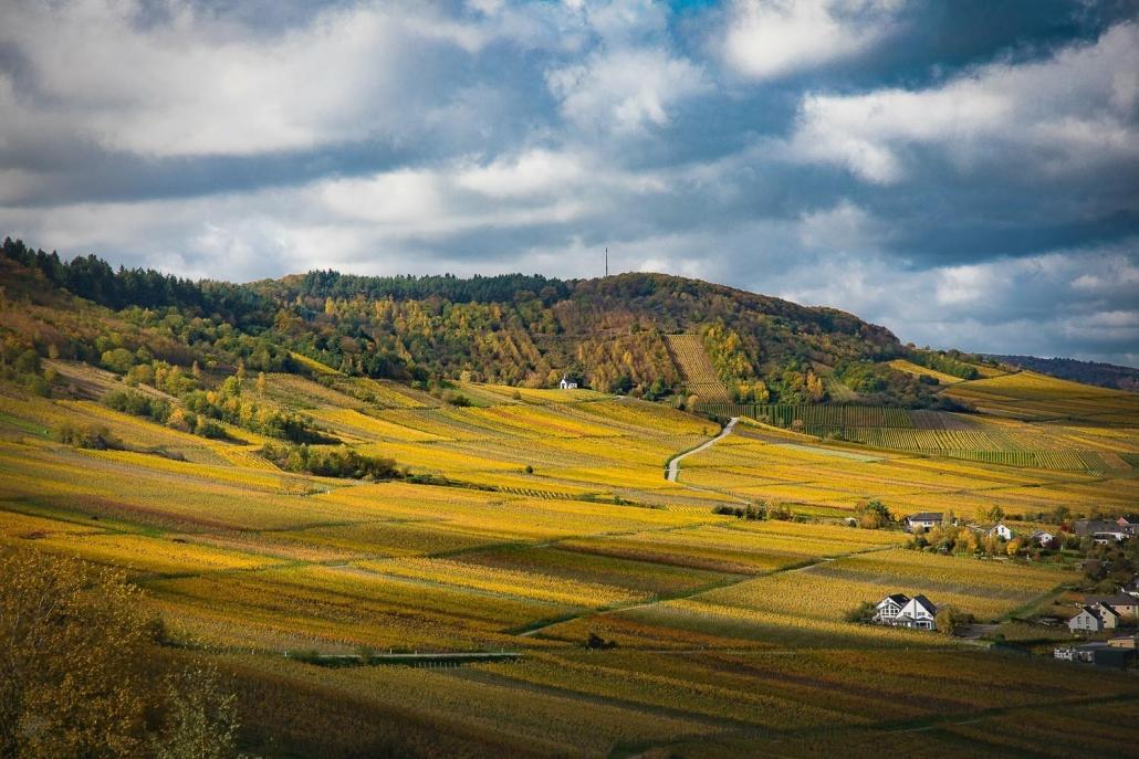 Vom Landhaus HEIMSICH sind es nur 20min bis zur Mosel mit ihren unzähligen Weinbergen
