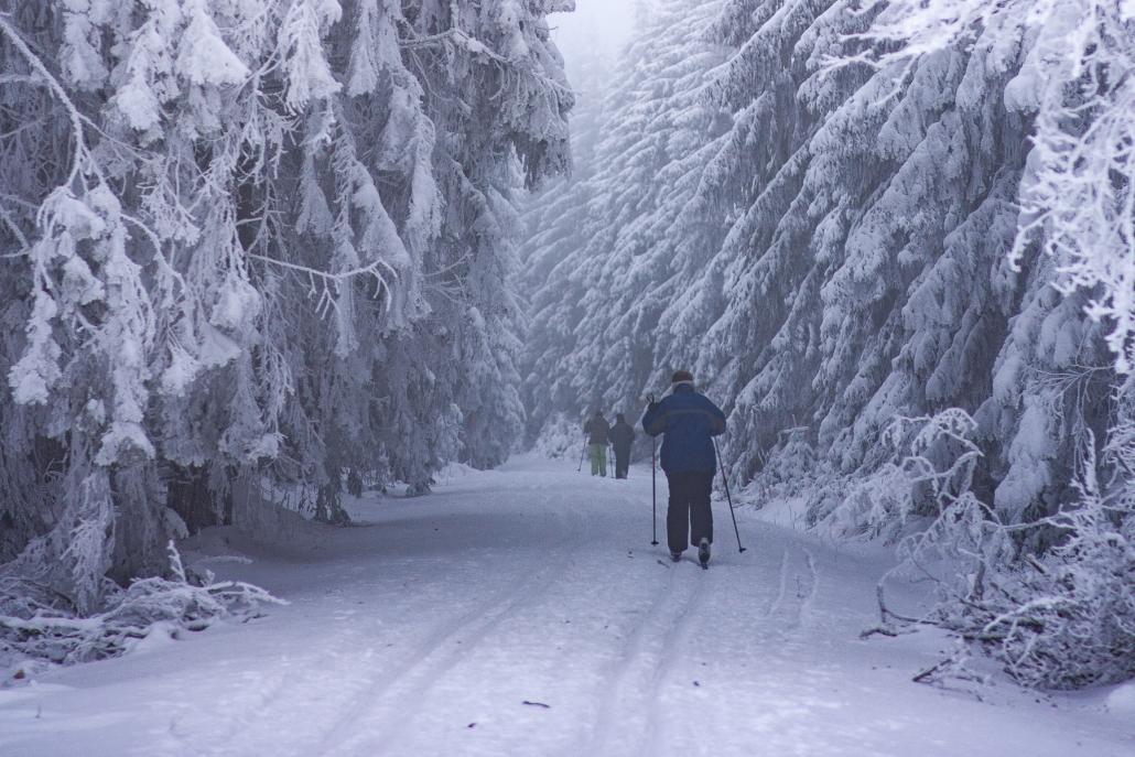 Das Wintersportgebiet am Erbeskopf, mit einer modernen Beschneiungsanlage, 3 Skipisten, 2 Rodelbahnen, gespurten Langlaufloipen, einem Rodelhang sowie einer Natureisfläche ist nur 10 Autominuten vom Landhaus HEIMISCH entfernt.