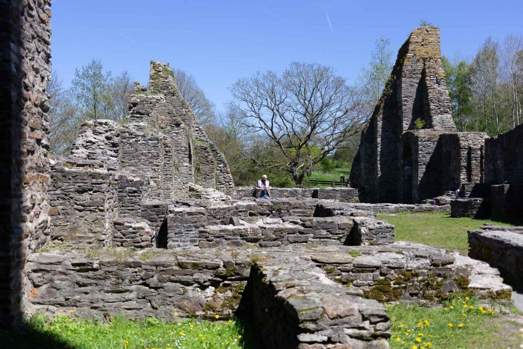 Die Burg Baldenau ist die Ruine einer Wasserburg im Hunsrück