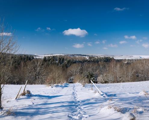 Wandern im Hunsrück - auch im Winter ein Erlebnis
