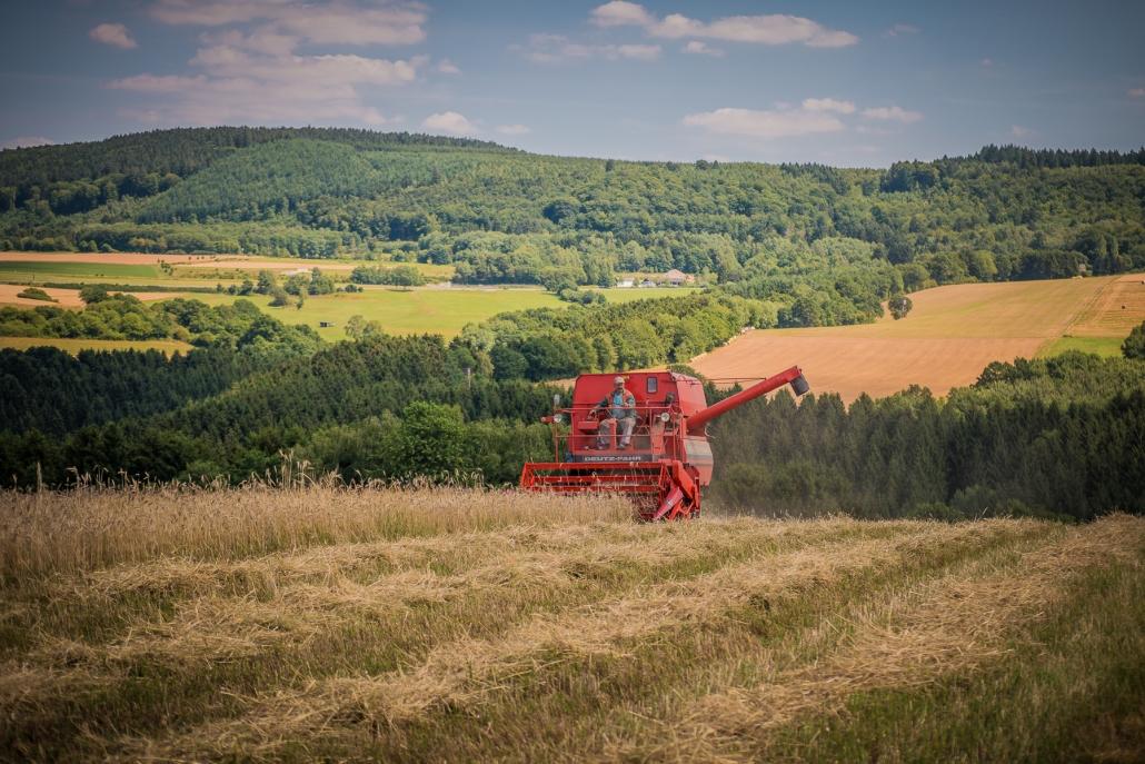 Landwirtschaft im Hunsrück