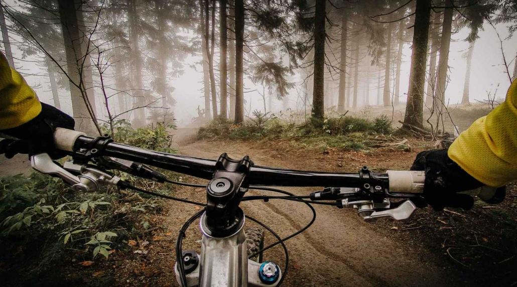 Der neue Trailpark für Biker befindet sich auf dem Erbeskopf, 10min vom Landhaus HEIMISCH im Hunsrück